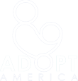 adoption agencies florida