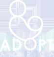 adoption agencies florida